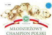 Młodzieżowe Championy w rodzinie Kuvianartok