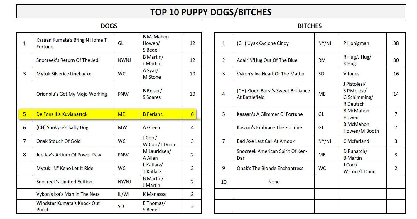 amca-top10puppydogs-1quatter